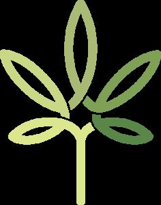 rejuvenate-logo